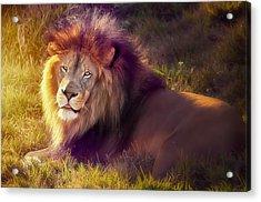 The Glorious King  Acrylic Print