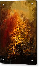 The Glory Of Autumn Acrylic Print by Jai Johnson