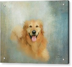 Acrylic Print featuring the mixed media The Golden by Colleen Taylor