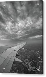 The Golden Wing Bw  Acrylic Print