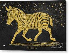 The Golden Zebra Acrylic Print