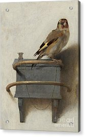 The Goldfinch, 1654  Acrylic Print