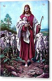 The Good Shepherd 1878 Bernhard Plockhorst Acrylic Print
