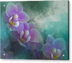 The Good Showing Acrylic Print