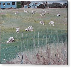 The Grazing Sheep Acrylic Print by Francois Fournier