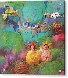 The Great Barrier Reef Acrylic Print by Anne Geddes