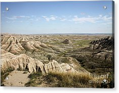 The Great Expanse Acrylic Print by Sandy Adams
