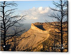 The Great Mesa Acrylic Print by David Lee Thompson