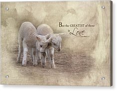 Acrylic Print featuring the photograph The Greatest Is Love by Robin-Lee Vieira