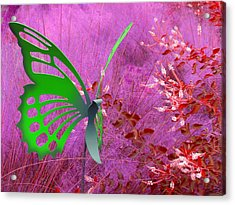 Acrylic Print featuring the photograph The Green Butterfly by Rosalie Scanlon