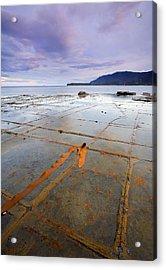The Grid Acrylic Print by Mike  Dawson