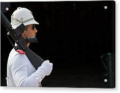 Acrylic Print featuring the photograph The Guard by Keith Armstrong