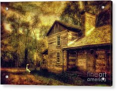 The Guardian Acrylic Print by Lois Bryan