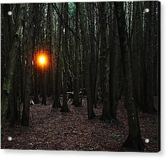 Acrylic Print featuring the photograph The Guiding Light by Debbie Oppermann