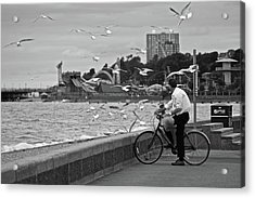 The Gull Man Acrylic Print