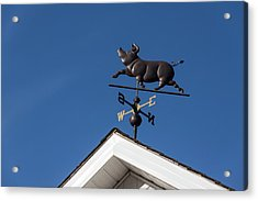 The Happy Piglet Weathervane Acrylic Print