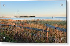 The Harbor Acrylic Print by Bill Wakeley