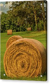 Acrylic Print featuring the photograph The Hay Bales by Barry Jones