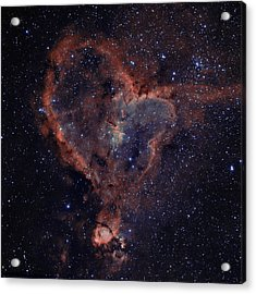 The Heart Acrylic Print by Charles Warren