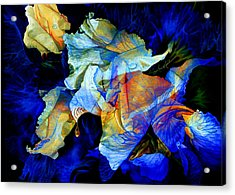 The Heart Of My Garden Acrylic Print by Hanne Lore Koehler