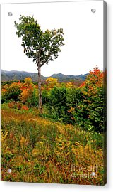 The Heart Of New Hampshire Acrylic Print by Catherine Reusch Daley