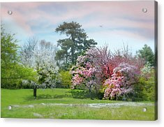 Acrylic Print featuring the photograph The Hidden Garden by Diana Angstadt