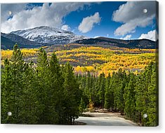 The High Road Acrylic Print by Tim Reaves