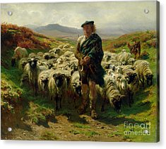 The Highland Shepherd Acrylic Print