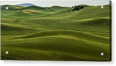 The Hills Speak Acrylic Print by Jon Glaser