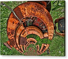 The Hitchhiker Acrylic Print by Wendy J St Christopher