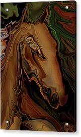 Acrylic Print featuring the digital art The Horse by Rabi Khan
