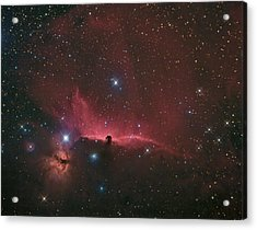 The Horsehead Nebula Acrylic Print by Charles Warren