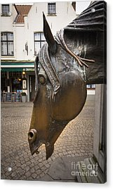 The Horses Head Acrylic Print by Nichola Denny