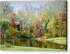 The House Guest Acrylic Print by Diana Angstadt