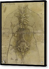 Acrylic Print featuring the painting The Human Organ System by James Christopher Hill