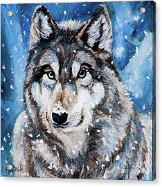 The Hunter Acrylic Print by Igor Postash