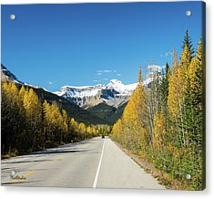The Icefields Parkway Acrylic Print