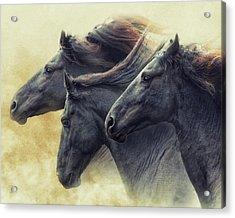 The Immortals Acrylic Print
