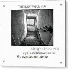 The Inevitable Zen  Acrylic Print by Steven Digman