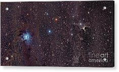 The Iris Nebula In Cepheus Acrylic Print by John Davis
