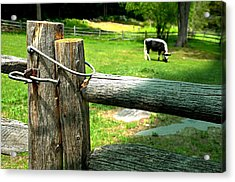 The Iron Latch Acrylic Print by Diana Angstadt