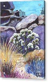 The Joshua Tree Acrylic Print by Carol Wisniewski