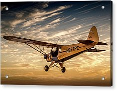 The Joy Of Flight Acrylic Print