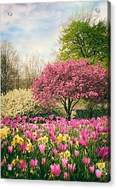 Acrylic Print featuring the photograph The Joy Of Tulips by Jessica Jenney