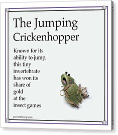 The Jumping Crickenhopper Acrylic Print