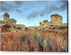 Acrylic Print featuring the photograph The Kansas Badlands by JC Findley