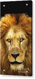 The King Acrylic Print by Celestial Images