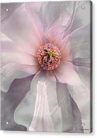 The Kiss Acrylic Print by Torie Tiffany