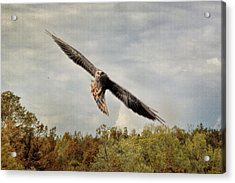 The Kite In Autumn Acrylic Print