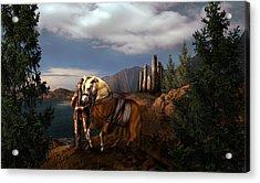 The Knight Of The Kingdom Acrylic Print